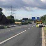 В Германии улитки стали причиной аварии