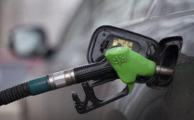 Бензин в России не подешевеет из-за обвала цен на нефть