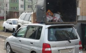Тонировка автомобиля: как не получить штраф