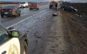 Легализация марихуаны в США привела к росту аварийности на дорогах