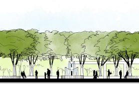 Проектирование парков